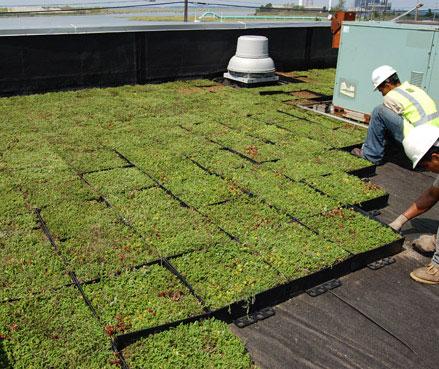 Paisajismo sustentable con las terrazas jard n arquimaster for Jardines urbanos en terrazas