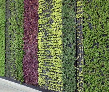 Paisajismo sustentable con las terrazas jard n arquimaster for Paisajismo terrazas