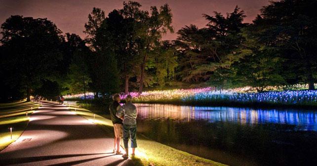 Curso jardines nocturnos la luz es el paisaje arquimaster for Jardin botanico nocturno 2016