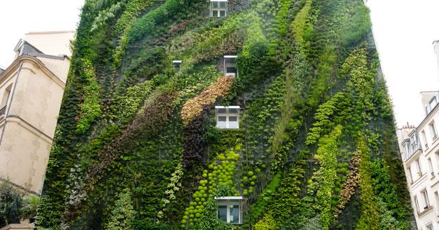 Taller techos verdes jardines verticales y tematicas Techos verdes y jardines verticales