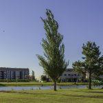 Terralagos lanza una nueva etapa de ventas de terrenos