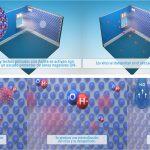 Nuevos test científicos avalan la eficacia de una ecopintura contra el coronavirus humano