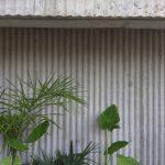 Paisajismo (Espacio 1 / Casa FOA 2021) / Tomás Nadares